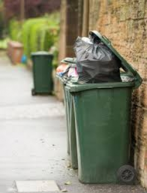 Views Sought on Bigger Bins and Fortnightly Collections